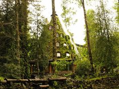 Montana Magica Lodge in the middle of the rainforest :)