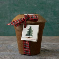 """With the help of this all-inclusive kit, plant the seeds of a majestic Scotch Pine and watch it grow over the years into a full-size Christmas tree.- Kit includes: biodegradable pot, seed, growing medium, instructions- USA5.5""""H, 5.5"""" diameterOnline Exclusive"""