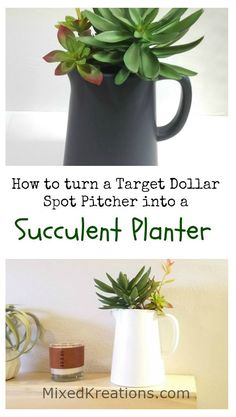 how to make a easy diy faux succulent planter / how to turn a target dollar spot pitcher into a succulent planter