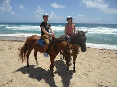 Must Do in Barbados | ... Riding Centre Reviews - Barbados, Caribbean Attractions - TripAdvisor