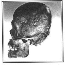 Giant skeletons found in Jerusalem substantiating Biblical claims...