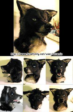 Black Wolf/Wolfdog - by Arcanic (alt collage), original here: http://www.furaffinity.net/view/12366162/