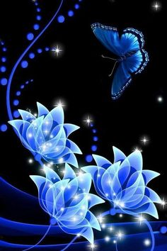 iphone wallpapers background lock screens - blue butterfly on blue roses Butterfly Pictures, Butterfly Flowers, Beautiful Butterflies, Blue Flowers, Beautiful Flowers, Art Flowers, Beautiful Gif, Wallpaper Flower, Wallpaper Backgrounds