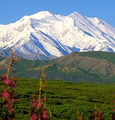 Viewing the biggest attractions in Alaska Eight most beautiful attractions in Alaska For people who love raw nature and wildlife, rather than luxury resorts, Alaska is the perfect place for them. The attractions in this vast land are truly spectacular.