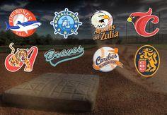 VIDEO // Los ocho equipos que conforman la Liga Venezolana de Beisbol Profesional ya publicaron los costos de la boletería de la temporada 2015-2016. Conoce cuánto costará disfrutar del sabor de la pelota criolla este año.