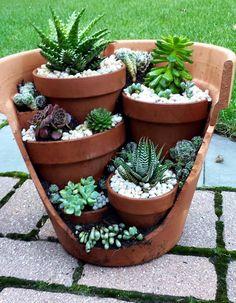 Succulents in Brocken pot Flower Vases, Diy Flower, Diy Garden Decor, Planter Pots, Succulents, Yard, Plants, Outdoor, Type 3