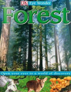 This is one of the titles of books for children that you can read online for free from We Give Books.Org called Forest. Want to have the boys check out this book!