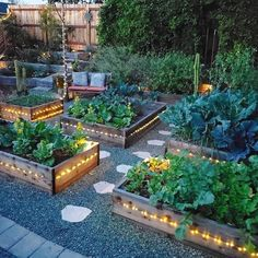 32 extraordinary vegetable garden ideas for inspiration in the garden 14 # ba . - 32 extraordinary vegetable garden ideas for inspiration in the garden 14 # ba …. 32 extraordinary vegetable garden ideas for inspiration in the garden 14 # ba … Backyard Vegetable Gardens, Potager Garden, Vegetable Garden Design, Outdoor Gardens, Roof Gardens, Fruit Garden, Edible Garden, Garden Paths, Architecture Design Concept