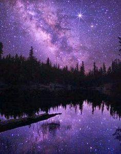 Beautiful purple world