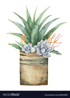 Watercolor vector composition of cacti and succulents in a pot isolated on white background. Watercolor Flowers, Watercolor Paintings, Cactus Illustration, Watercolor Painting Techniques, Cactus Art, Flower Clipart, Cactus Y Suculentas, Cacti And Succulents, Free Vector Art