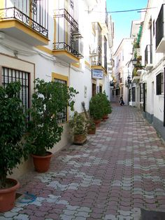 Hostel in Marbella Old Town