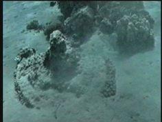 De Overtocht door de Rode Zee. Locatie in zee Gevonden! - De Onthulling van Gods Schat, deel: 3 - YouTube