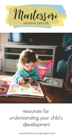 A look at the Montessori sensitive periods plus further reading for understanding how they influence a child's developmental needs Montessori Homeschool, Montessori Toddler, Preschool Curriculum, Montessori Activities, Toddler Preschool, Homeschooling, Family Child Care, Activities For 2 Year Olds, How To Teach Kids