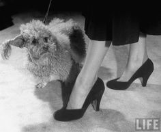 he Depression during the 1930's highly influenced shoe fashion in the USA and Europe as heels became lower and wider.