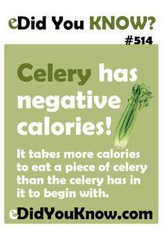 Celery has negative calories! It takes more calories to eat a piece of celery than the celery has in it to begin with.