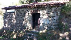 Paisaje ruta de los molinos de San Miguel Plants, San Miguel, Paths, Scenery, Fotografia, Plant, Planets