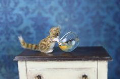 OOAK Dollhouse Miniature Pet Kitten Ginger with Goldfish Bowl Head Rotates 1:12 #Handmade