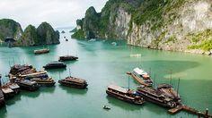 EN IMAGES - Plus de 90 millions d'habitants vivant sur 331.690 km², bien moins que la France. Le Vietnam est un pays dense, étiré sur 1500 km. Sur place, à considérer l'académie de Hanoi, la capitale, et la jovialité des habitants de Hô-Chi-Minh-Ville, on prend la mesure de ce qui fit si longtemps la frontière entre le Nord et le Sud. Le pays, désormais uni pour le meilleur, triomphe au plan touristique. Mieux : il séduit invariablement par sa vitalité, son identité, la multiplicité d...