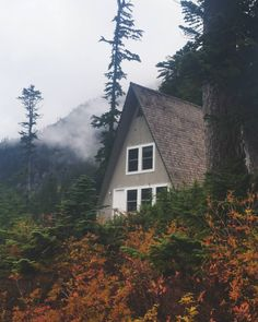 Foggy Fall A-Frame - By Nathan Alexander