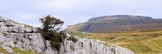 Looking from Crina Bottom to Ingleborough Yorkshire Dales, The Places Youll Go, Walks, Hiking, Adventure, Mountains, Free, Travel, Horsehair