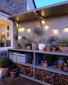 Hydroponic Supplies, Hydroponic Gardening, Hydroponics, Indoor Garden, Garden Plants, Indoor Plants, Back Gardens, Small Gardens, Outdoor Shelves