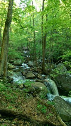 Virgin Falls- Pocket Wilderness -byKeepTrekkan