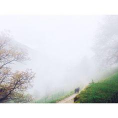 Cureggia - Bre Cl Instagram, Switzerland, Hiking, Country Roads, Walks, Trekking, Hill Walking
