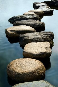stepping stones by Donn