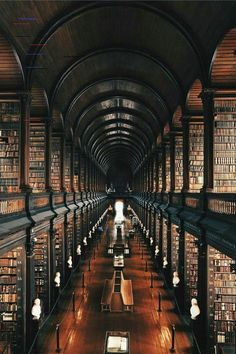 The Long Room Library at Trinity College In Dublin Ireland City Library, College Library, Dream Library, Central Library, Trinity Library, Magical Library, Library Card, Peabody Library, Trinity College Dublin