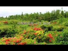 自然の音景色  小鳥3 (野鳥の鳴き声) Nature Sound - https://www.youtube.com/watch?v=9l8GD-xNVqY