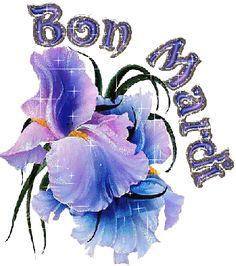 Bon Mardi (146)
