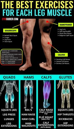 When people gain weight by putting on extra fat, the two most common places where that extra fat ends up is around the midsection and in the legs.And when talking about the legs, we are including the. Gym Workout Chart, Gym Workout Tips, Workout Challenge, Workout Women, Workout Fitness, Leg Day Workouts, Weight Training Workouts, At Home Workouts, Hip Exercises For Men
