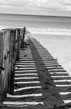 Back to Black (and white) Liz McMahon Simple and beautiful...love B&W photes