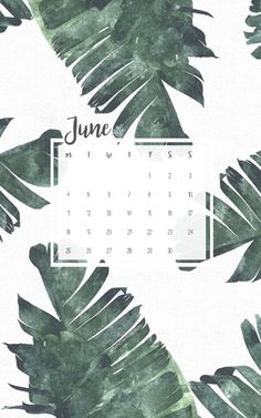 June 2018 Wallpapers – Free Download! – Raincoates Beauty