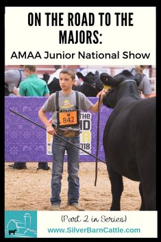 """We have officially entered Junior Nationals show season. As promised in """"On the Road to the Majors: Preparing for a Major Stock Show,"""" we will be providing a series of interviews with folks who attend Major shows to give our readers inside information about these shows. We're kicking off the series with an interview of our very own TJ Mills."""