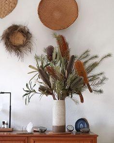 Banksia three ways on my sideboard today, thanks to @azalea_florist. 🌾