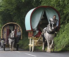These two Gypsy wagons are in England, but they remind me of the Gypsy caravans we saw on the backroads of Georgia in the 1950's. My dad would always respectfully and slowly go around them so the horses would not be startled.