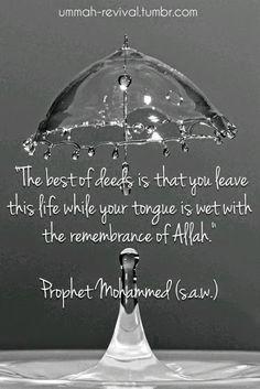 Remembrance of allah Like _ Follow _ Share #quran #islam #muslim #hadith #sahabah #deen #reminder #quote #islamic #dawah #prayer #salah #jannah #pray #faith #religeon #paradise #hijab #halal #mohammed #love #god #heaven #good #deed #beauty #universe