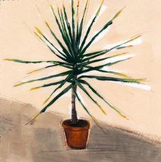 Small Yucca . giclee art print of painting   tastesorangey via Etsy