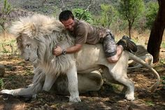 Kevin Richardson with his Lion