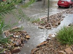 Streetwater harvesting