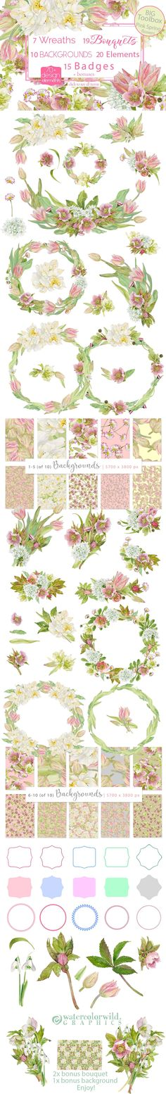 BIG Toolbox-Pink Spring Flowers by watercolorwild.graphics on @creativemarket