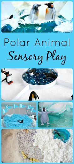 Explore the animals of the arctic and Antarctica with these fun polar animals sensory bins. Great sensory play ideas for toddlers and preschoolers.