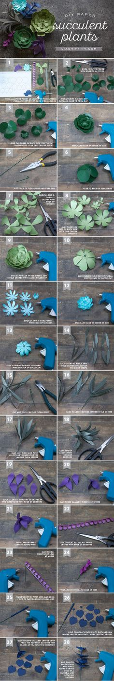 Tutorial for Seven Paper Succulents