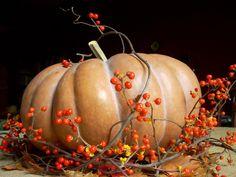 pumpkin centerpiece | Pumpkin & Bittersweet Centerpiece