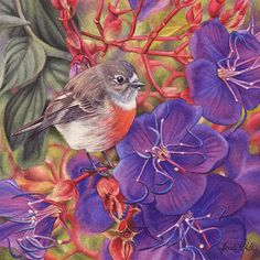 Heidi Willis - Female Scarlet Robin and Tibouchina Miniature-