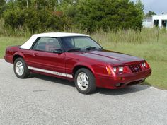 """""""Sally John"""" After / 1984 1/2 GT 350 20th Anniversary Edition"""