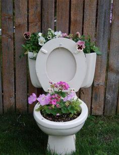 Toilet planters. Lined all the way down a fence line w/ flowers? I think quirky, but cute!!