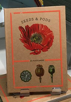 Seeds And Pods: 24 Postcards