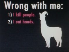 CAAAARRRRRLLLL!!! hahah if you havent watched llamas with hats you need to